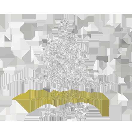 業號20160603